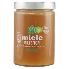 APICOLTURA CASENTINESE-Apicoltura Casentinese miele Millefiori Bio 750 g