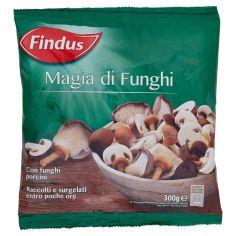 FINDUS-Findus Magia di Funghi 300 g