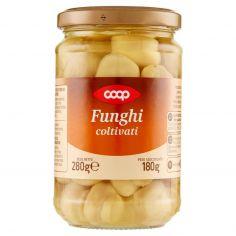 Coop-Funghi coltivati 280 g