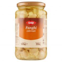 Coop-Funghi coltivati 530 g