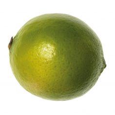 Lime g 300