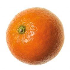 Mandarini nadorcott jrsk kg 1