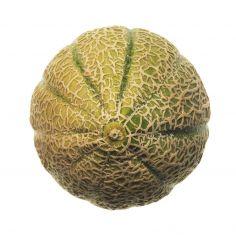 Melone retato polpa gialla kg 1,1
