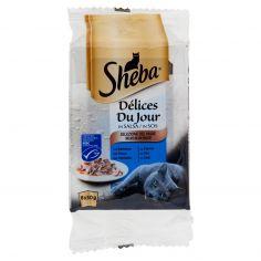 DELICE DU JOUR-Sheba Délices Du Jour in Salsa Selezione del Mare 6 x 50 g