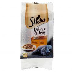 DELICE DU JOUR-Sheba Délices Du Jour in Salsa Selezione Delicata 6 x 50 g