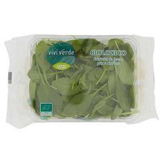 Coop-Spinacino Bio 100 g