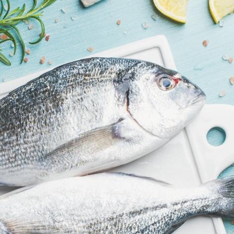 Carne, Salumi e Pesce